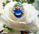LITTLE ANGEL,11D.12